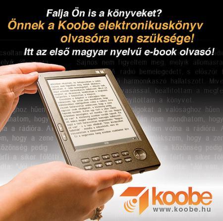 Könyvtár a zsebben – Education 2009