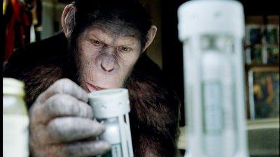 A majmok bolygója: Lázadás (mozi)