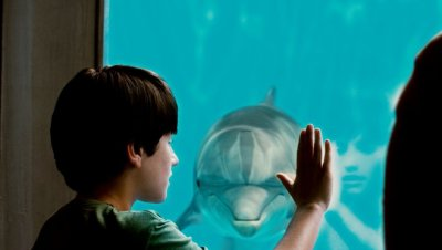 Delfines kaland (mozi)