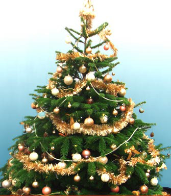 Karácsonyra karácsonyfa? (tipp)
