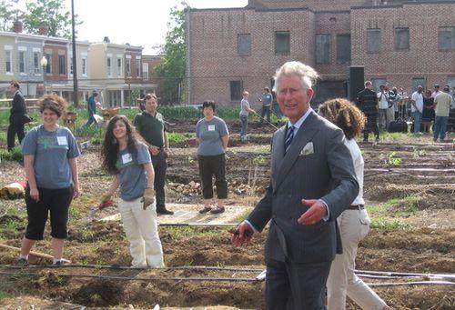Károly Herceg, a biokertész – a fenntartható Highgrove-i biogazdaság