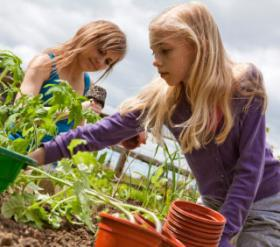 Húszezer kisiskolás ismerkedik meg a helyi termékek fontosságával