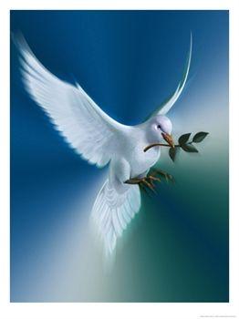 A béke nemzetközi világnapja
