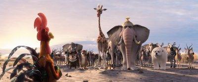 Egyesült állatok (mozi)