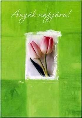 Anyák napi képek képeslapok