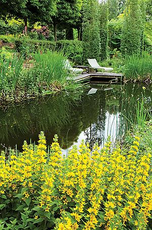 Víztakarékosság a kertekben is