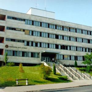 105 millió forintos kiegészítő támogatást kap a Pető intézet