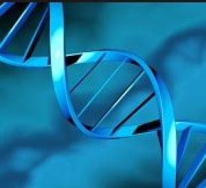 A gének felelősek a tanulásbeli különbségekért?