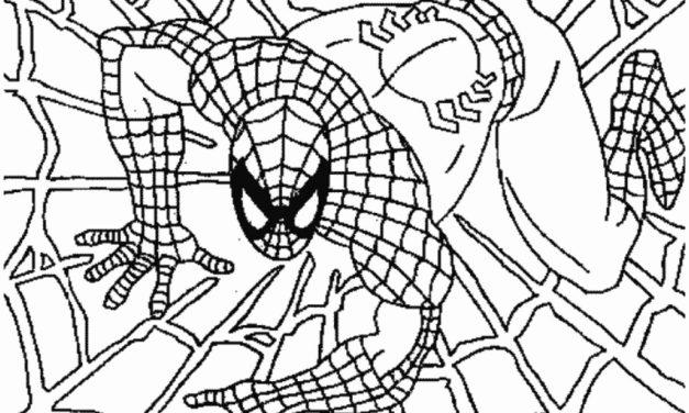 Pókemberes kifestők