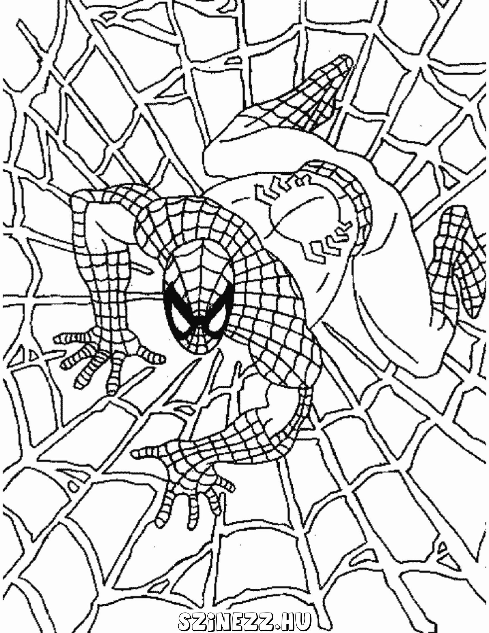 pókember kifestő színező, pókember kifestők