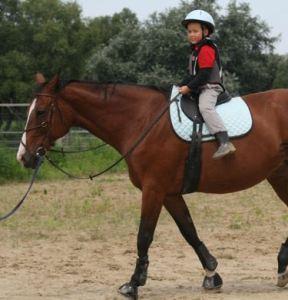 Szeptembertől még több gyermek ismerkedhet meg a lovaskultúrával