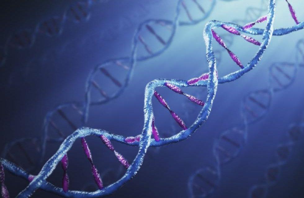DNS döntheti el, kivel éljük le az életünket