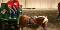 Sárrétudvariban a ló hátán van a mennyország