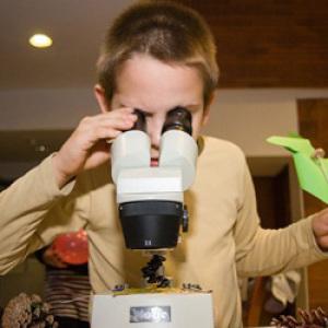 Kutatók Éjszakája: klónozás és csillagmustra Szombathelyen