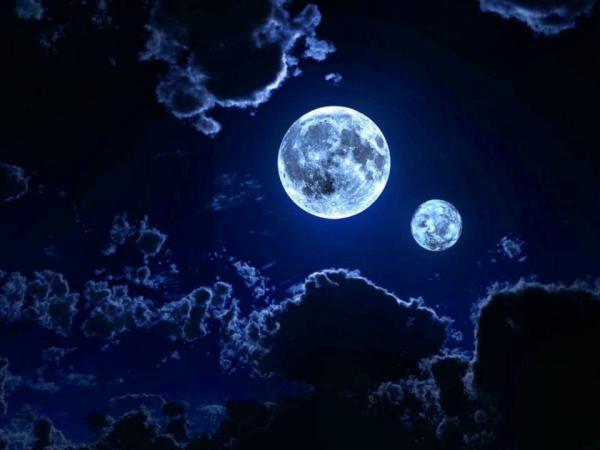 Orgoványi Anikó:  Hold-fogyókúra