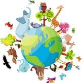 Orgoványi Anikó:  Állatok világnapja
