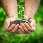 A klímatudatosság az egyéni felelősségvállalással kezdődik
