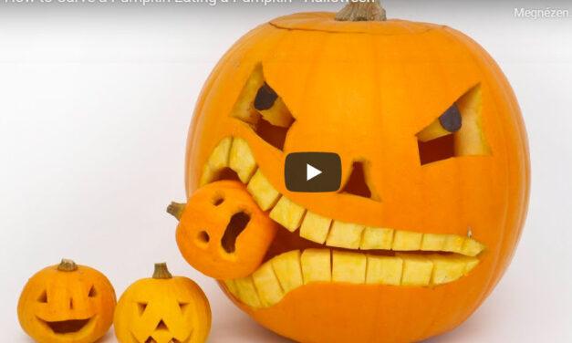 Kreatív Halloween tökfaragás – videó