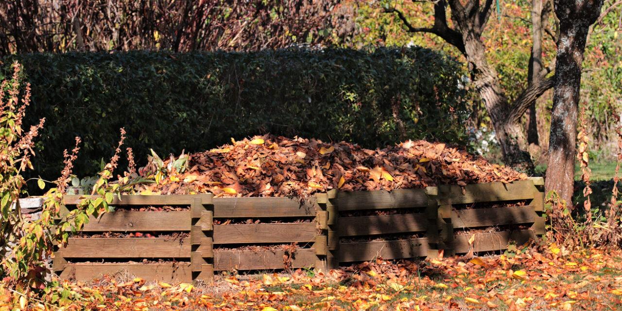 10 dolog, amit tilos a komposztba dobni – Sokan nem tudják