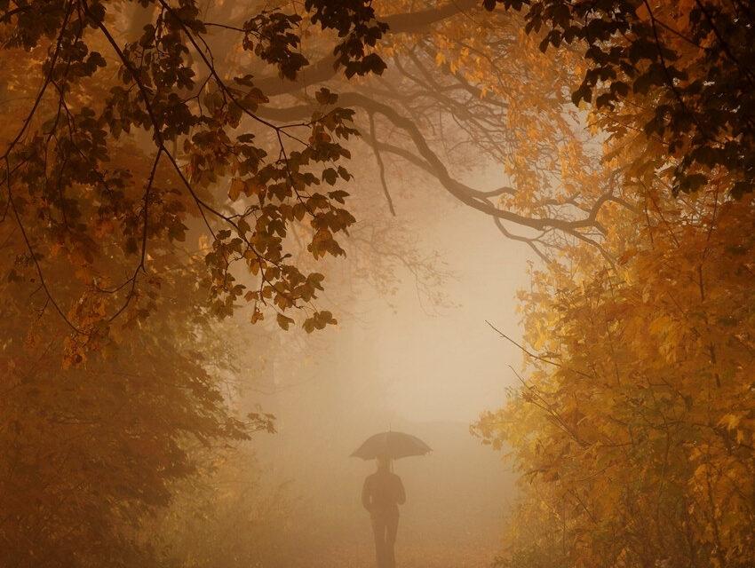 Guillaume Apollinaire: Búcsú
