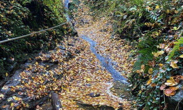 Kalandtúra a vadregényes Rám-szakadékban